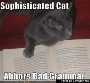 grammar cat 2